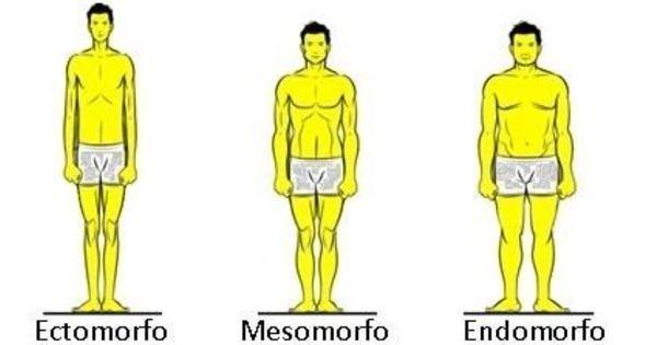 biotipo-de-corpo